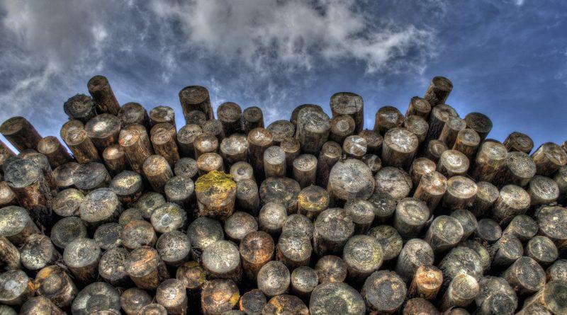 [RealMoneyTrader]: Bauholz (Lumber) am Allzeithoch